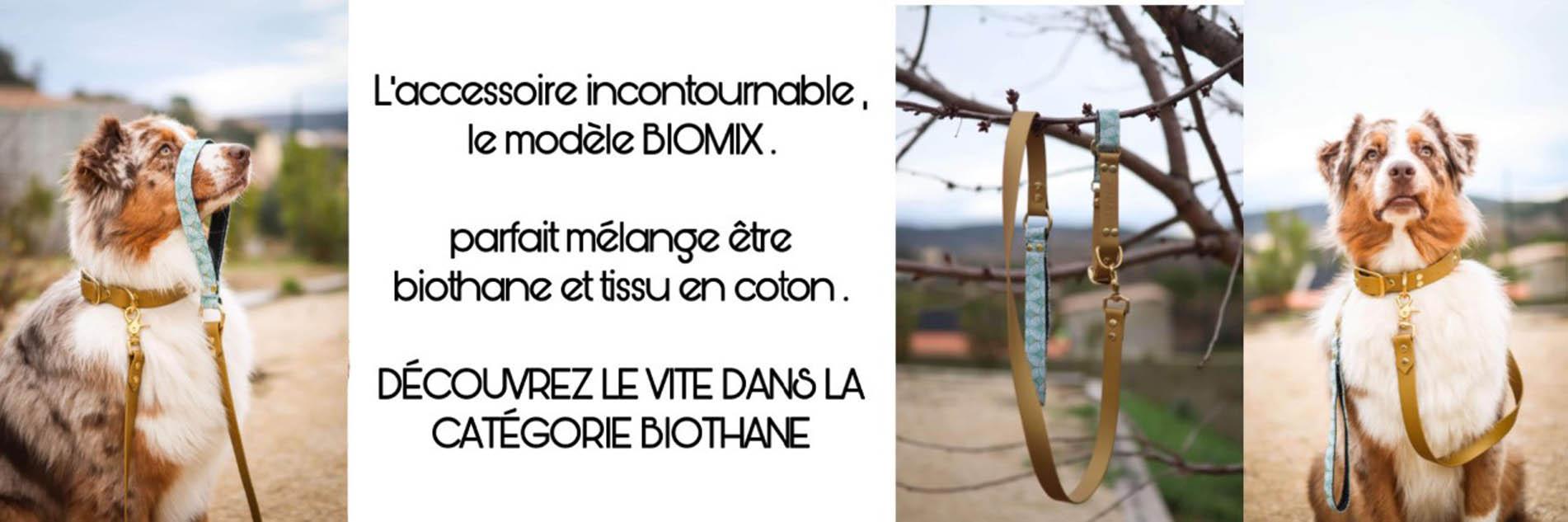 banniere2.jpg